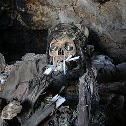 Fumar te va a matar. | Fumar te va a matar.