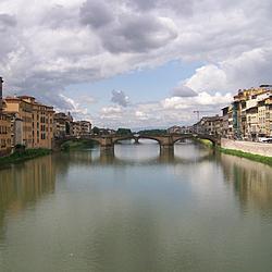 Fiore Arno