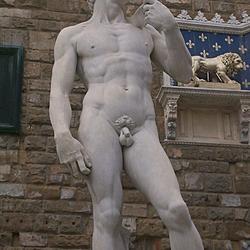 David #1 | In Piazza della Signoria