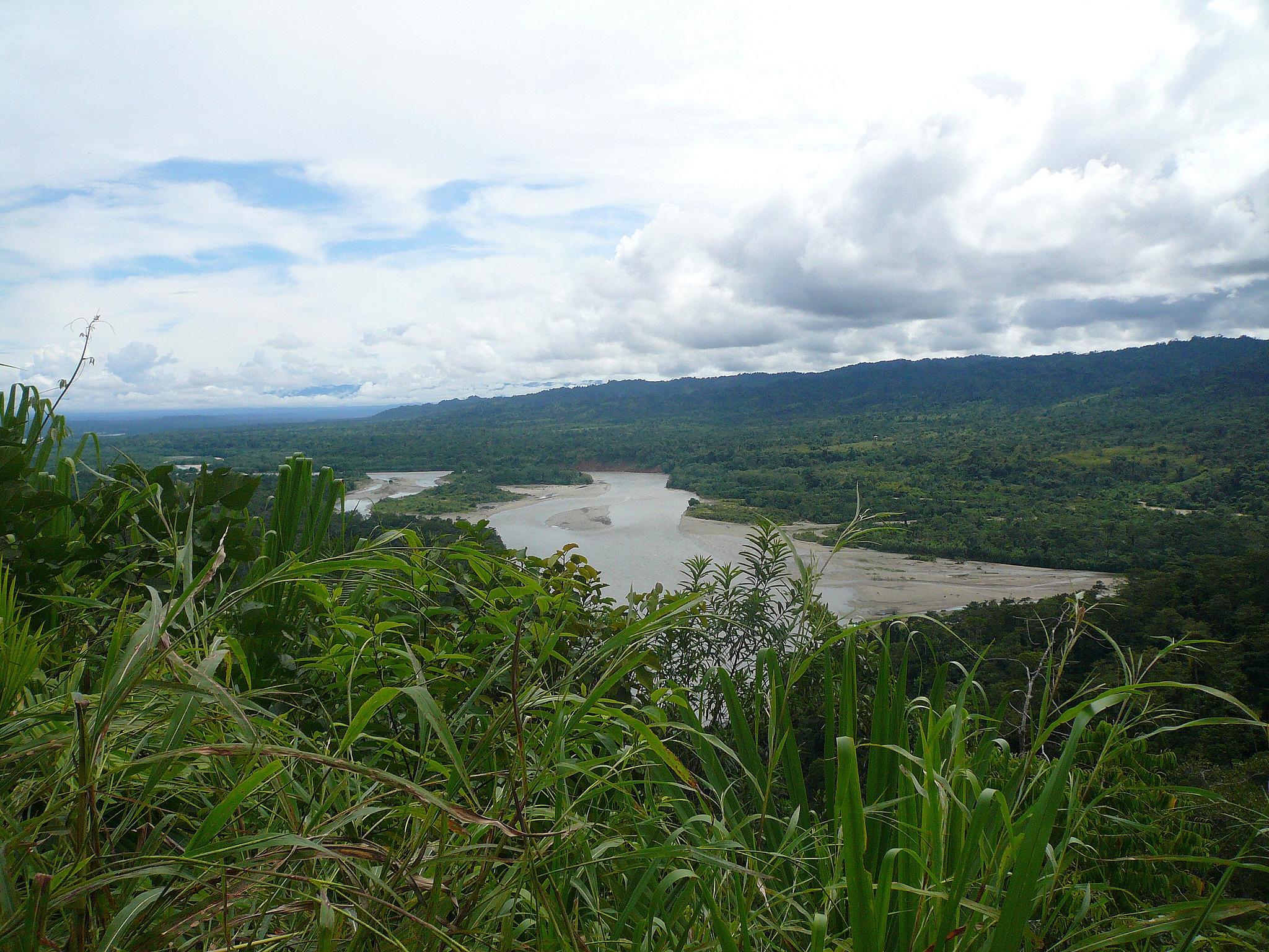 Overlooking the Amazon river.